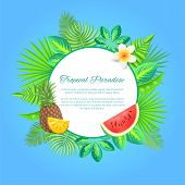 Tropical Paradise Summer Banner, Vector Placard Sample. Whole Pineapple And Sliced Watermelon With E poster