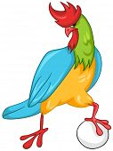 picture of game-cock  - Cartoon Character Cock Isolated on White Background - JPG