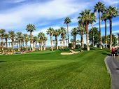 A Young Man Walking Towards The Green On A Par 4 Surrounded Palm Trees In The Background On The Dese poster