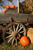 foto of wagon wheel  - Harvest arrangement with pumpkins on a old wooden wagon - JPG