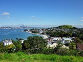 View over suburb towards Auckland city