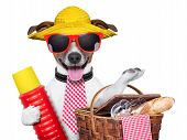 foto of thermos  - holiday dog with thermos and basket ready for picnic - JPG