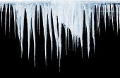 stock photo of icicle  - Group of icicles hanging on black background - JPG