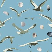 picture of beach shell art  - Sea gulls and shells vector seamless pattern  - JPG