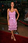 UNIVERSAL CITY - JULY 19: Adrianne Curry at the Premiere Screening of