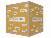 Organizational Culture 3D Cube Corkboard Word Concept