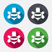 picture of flying-insect  - Bee sign icon - JPG