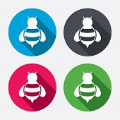 stock photo of flying-insect  - Bee sign icon - JPG