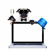 stock photo of christmas dog  - pug dog behind a laptop pc laptop computer screen isolated on white background dog ready to toast for new years eve behind a laptop pc computer isolated on white background - JPG