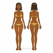 picture of anorexia  - Fat and thin woman - JPG