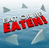image of fin  - Eat or Be Eaten words on water surface with shark fins swimming around you to illustrate deadly - JPG