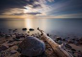 picture of driftwood  - Beautifu rocky sea shore with driftwood trees trunks at sunrise or sunset - JPG