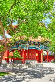 foto of lamas  - Beautiful View of Yonghegong Lama Temple - JPG