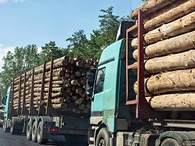 stock photo of logging truck  - Column timber trucks with logs moving on the road - JPG