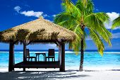 picture of gazebo  - Tropical gazebo with chairs on amazing beach with palm tree - JPG
