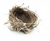 Urban Vogelnest, isolated on White.
