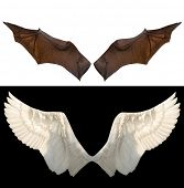 stock photo of spread wings  - devil and angel wings - JPG