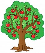 picture of apple tree  - Cartoon apple tree  - JPG