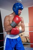 Young male boxer wearing blue headgear standing in boxing ring poster