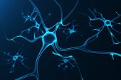 neurons poster