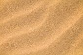 Beautiful Nature Sandy Background. Abstract Pattern Of Sea Sand. Wave Of Sand On Sea Coast Formed By poster