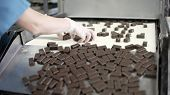 Production Line For The Production Of Chocolates. Candy Covered With Chocolate. Sweets Move Along Th poster