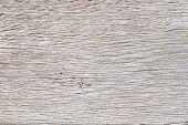 Old White Oak Wood For Background Or Old Grey Wooden Texture. Old Oak For Vintage Table Or Furniture poster