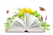picture of reading book  - Book of nature - JPG