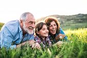 Senior Couple With Granddaughter Outside In Spring Nature, Relaxing On The Grass. poster