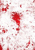 stock photo of gory  - Blood splatter on a white wall background with gory effect - JPG