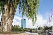 image of weeping willow tree  - A panoramic view of downtown Toledo Ohio - JPG