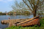 stock photo of sloop  - River in Holland with wooden sloop and tree - JPG