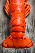 stock photo of lobster tail  - Lobster tail - JPG
