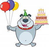 stock photo of dog birthday  - Birthday Gray Bulldog Cartoon Mascot Character Holding Up A Birthday Cake With Candles - JPG