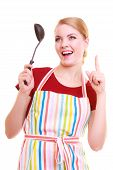 foto of ladle  - Funny housewife or cook chef in colorful kitchen apron with ladle isolated studio shot - JPG