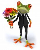 picture of prince charming  - Frog - JPG