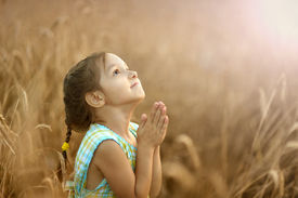 stock photo of pray  - Cute happy little girl prays in wheat field - JPG