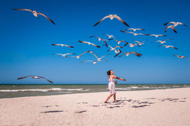 stock photo of flock seagulls  - Young woman in a nice dress feeding a flock of seagulls on a white sand beach - JPG