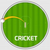 pic of cricket shots  - Cricket sports concept with view of sixer shot on stadium background - JPG