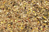 image of feeding horse  - Detailed view of horse feed mix for sale in a market stall - JPG