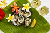stock photo of oyster shell  - Natural oysters on banana leaf with two glasses of champagne and tropical flowers - JPG