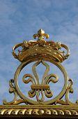 foto of versaille  - Ile de France golden gate of Versailles palace in Les Yvelines - JPG