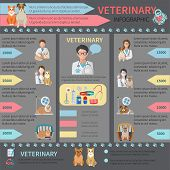 stock photo of bag-of-dog-food  - Veterinary flat infographic set with pet doctor and animals vector illustration - JPG