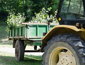 stock photo of tractor-trailer  - Yellow tractor with green trailer on a grass field - JPG