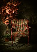 stock photo of edwardian  - Studio image of a colorful antique empty chair shot in a chiaroscuro style of lighting sitting next to artificial plant - JPG