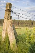 stock photo of barbed wire fence  - barbed wire fence on meadows - JPG