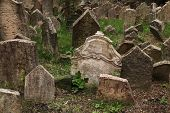 picture of tombstone  - Abandoned tombstones at the Old Jewish Cemetery in Prague - JPG