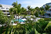 picture of oasis  - Bahamian oasis with pool and Palm trees under a blue sky - JPG