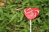 picture of valentine candy  - Candy valentines hearts on background of green grass - JPG