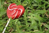 foto of valentine candy  - Candy valentines hearts on background of green grass - JPG